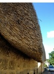 Detail of a thatched roof