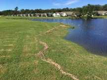 Water line around the pond.